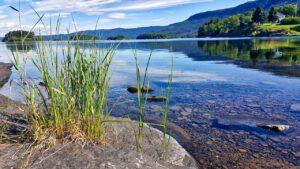 Decyzja środowiskowa jako dokument określający środowiskowe uwarunkowania realizacji przedsięwzięcia.