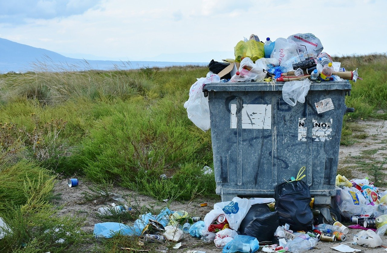 BDO, czyli baza danych o produktach i opakowaniach oraz gospodarce odpadami