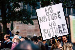 udział społeczeństwa w ochronie środowiska